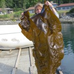 Me with a big ol peice of kelp.