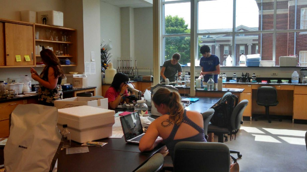 Staab Lab June18, 2014