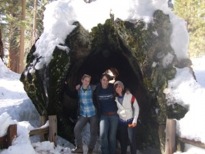 Some friends and me inside a fallen redwood during my Jan term  in California