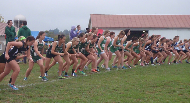 Some Green Terror women participate in the cross country meet at Shenandoah.
